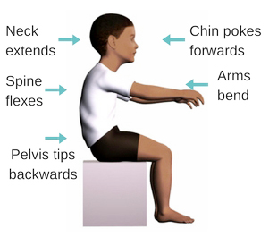 Sitting-stability-trunk-flexes.jpg