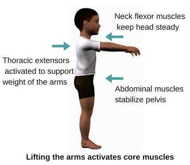 child-core-muscle-action.jpg