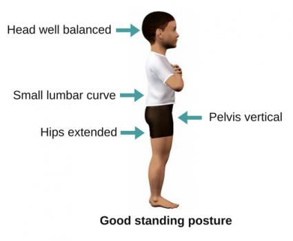 Good-postural-alignment-standing-child.jpg