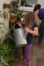 Pouring from a watering can.